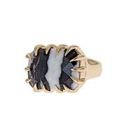 Isharya Zebra Jasper Claw Ring in 18kt Gold