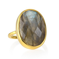 Margaret Elizabeth Faceted Cocktail Ring in Labradorite