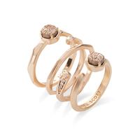 Kendra Scott Warren Ring Set in Rose Gold