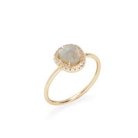 Shashi Nora Ring in Gold