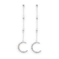 Rudiment Palmer Earrings in Silver